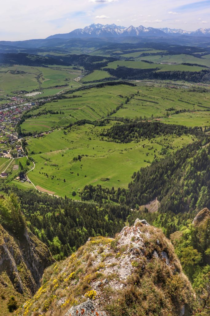 Widok na Tatry z punktu widokowego na Trzech Koronach